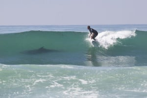Surf Lesson Santa Cruz by Club Ed Surf School and Camps